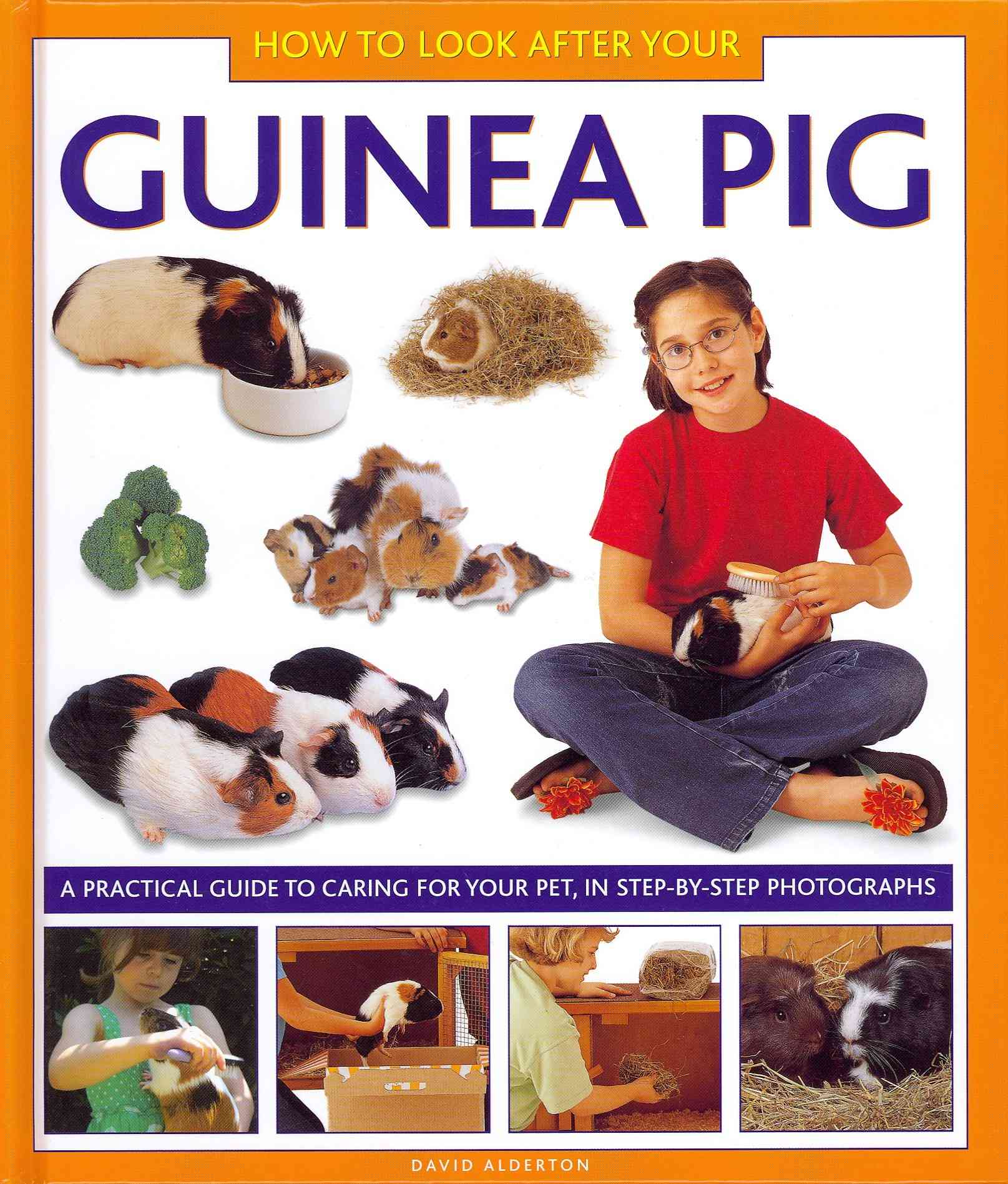 How to Look After Your Guinea Pig By Alderton, David